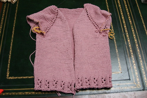 Devil's cardi in progress