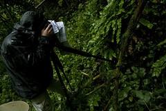 Florian Moellers @ San Marino (Gitzo S.A.) Tags: nature sanmarino wildlife gitzo wildwondersofeurope florianmoellers
