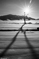V to sun (kavan.) Tags: winter shadow sun mountain snow cold tree canon landscape cool iran sigma iranian 1770 kurdistan sanandaj kavan kordestan 400d
