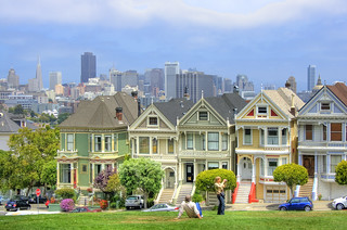 Foggy Day for the Painted Ladies
