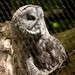 Woodland Park Zoo Seattle 031