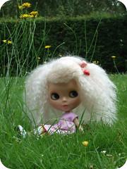 the little garden faerie...4 of 7