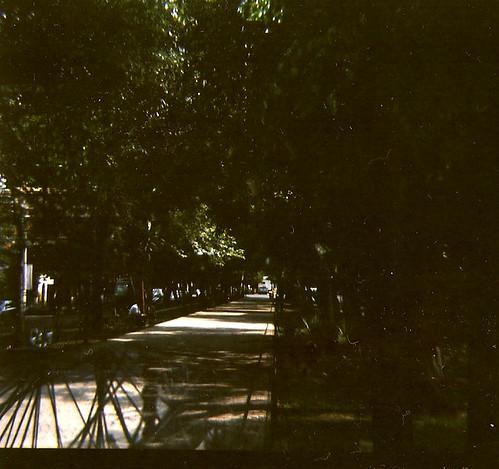 Camino por la avenida.