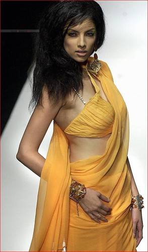 saree-model-indrani_das_gupta41_20080923_1875312219