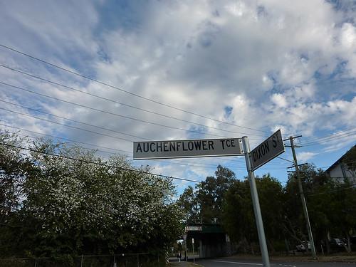 Oh Auchenflower! 44/365