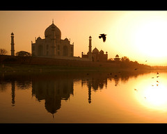 (lorytravelforever) Tags: india reflection river bravo tajmahal agra unesco mausoleo moghul yamuna mumtazmahal   alemdagqualityonlyclub lapreghierasistasciogliendo sshhhbacione certialtriqui