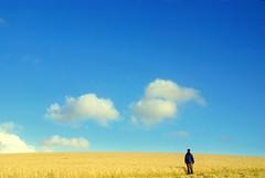 If only........ (Nicolas Valentin) Tags: cloud field landscape scotland scenery nicolasvalentin simpleandbilliant
