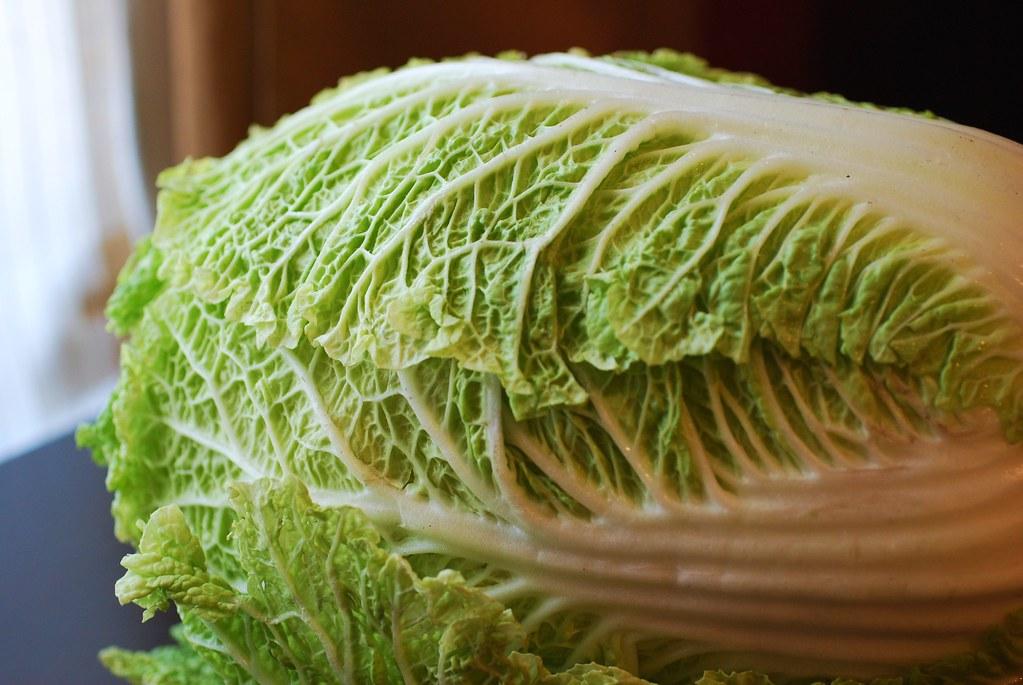 Napa Cabbage Slaw With Mustard Apple Butter Vinaigrette Always Order Dessert