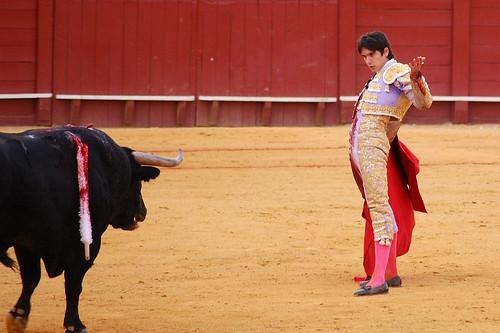 Castella_0313