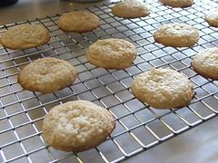 Orange Cheesecake Cookies