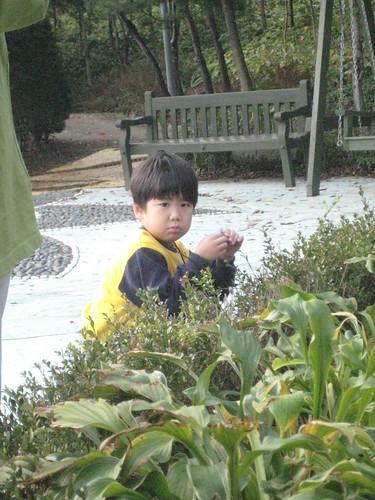 Botanical Garden Field Trip