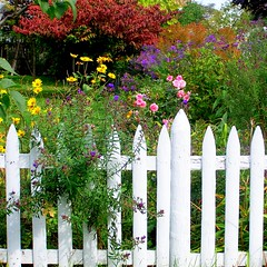 A Garden Enclosed (Heart Windows Art) Tags: flowers fence garden michigan cottage bible whitepicketfence fenced locked picket barred verse enclosed cheboygan abigfave