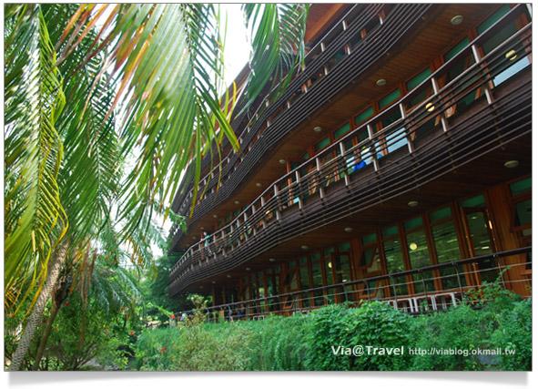 【北投一日遊】北投圖書館~綠色概念美學的圖書館26