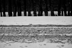 Saint-Malo - atana studio (Anthony SÉJOURNÉ) Tags: saintmalo bretagne brittany malouin plage beach briseslames balise phare escalier piscine swimming pool corsaire surcouf mouette atana studio anthony séjourné