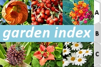 garden_index_icon