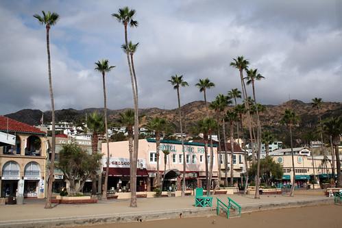 Catalina - Hotel Mac Rae