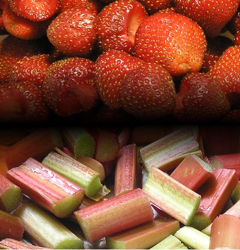 Strawberry-Rhubarb from a Small Kitchen Garden