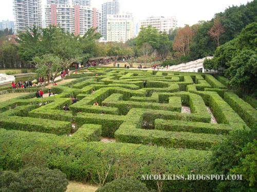 england maze replica overview