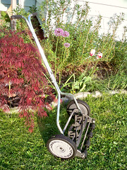 workin' the push mower (ljc@flickr) Tags: yard garden mower