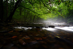 IMG_1388 (Andy Stacy) Tags: longexposure water fog canon river landscape tennessee foliage gatlinburg 1022mm greatsmokeymountains 30d littlepigeon