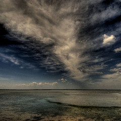 Camargue -  on the run in the sky (rinogas) Tags: france clouds nikon flamingos swamps d200 francia hdr camargue beautifulphoto nikkor1224dx aplusphoto saintemariesdelamer rinogas