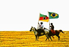 Sede de liberdade... (mauroheinrich) Tags: brasil cavalos gauchos ctg riograndedosul pampa gaucho bandeiras tradição gaúchos ibirubá fotógrafosbrasileiros cavalgadas fotógrafosgaúchos ranchodostropeiros fotógrafosdosul