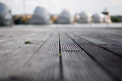 Decking Lines (Joe Hesketh) Tags: wood london dof bokeh decking thamesbarrier nikond90 nikon50mm14