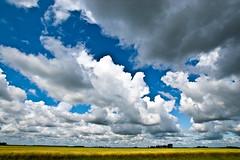 Minnesota (nosha) Tags: summer cloud nature beautiful beauty field minnesota clouds landscape nikon day cloudy grain wide july wideangle spot 11mm mn 2009 cloudscape lightroom f13 blackmagic nosha 11000sec nikond40 ilovemyd40 1118mmf4556 ul20090809 11000secatf13