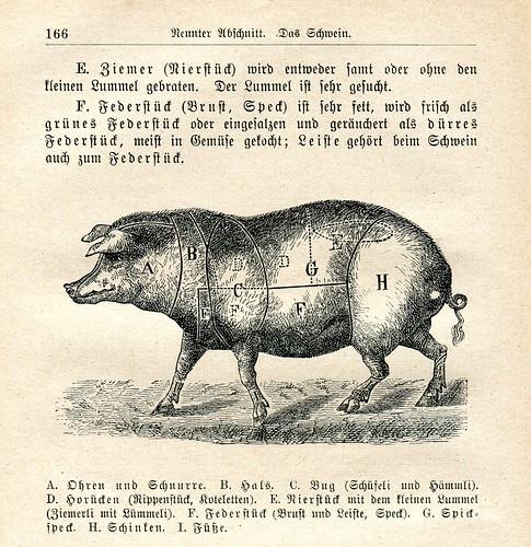 Basler Kochschule - Schwein
