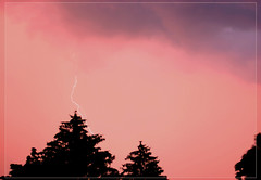 The thunder rolls (Cate Partridge Photography) Tags: pink sky storm tree bristol thunderstorm lightening thunder