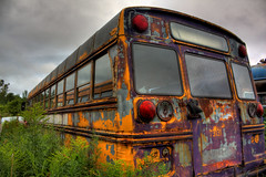 Abandoned painted bus by gorbould, on Flickr
