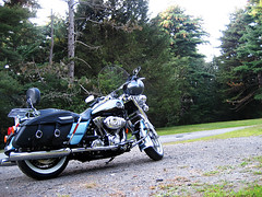 The Road King (crichgraphics) Tags: road trees classic nature bike photoshop manipulated inch king harley motorcycle hd ci 2008 davidson 96 cubic