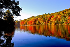 Autumn Begins..... (ineedathis) Tags: morning autumn trees newyork fall water colors reflections pond longisland coldspringharbor