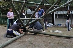 DSC_1833 (uruuruurusu) Tags: house bamboo remake