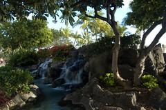 Oahu-070 (blazerat) Tags: hawaii waikiki oahu waikikibeach