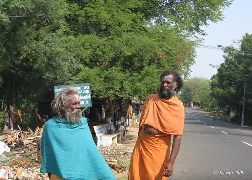 saffron devotees