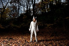 Max in the woods (steven_greenstreet) Tags: max halloween costume wherethewildthingsare wildthings spikejonze stevengreenstreet