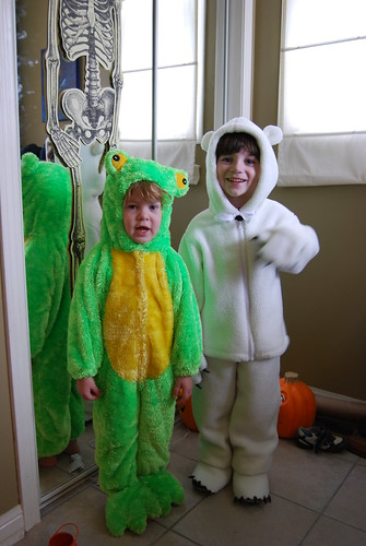 The Frog and the Polar Bear