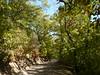 la passeggiata verso lo stagno