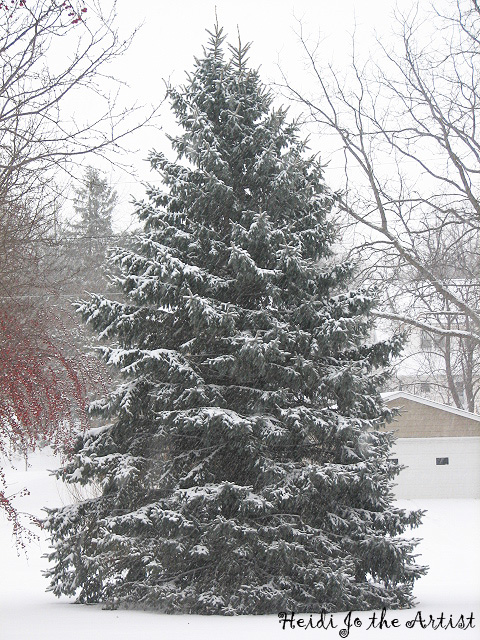Outdoors Christmas Tree