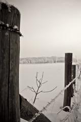 Keep it Together (Jeana Marie Photography) Tags: wood morning blue trees winter sky minnesota fog fence frost walk hike february twigs 2010