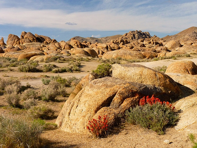 Afternoon Color in the Alabama Hills