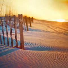 Happy Fence Friday {Heart on a Fence Post} Edition! (pixelmama) Tags: beach sunrise fence gold sand warm paradise heart post nirvana squareformat gettyimages lifesabeach  yippee beachfence gulfislandsnationalseashore hff happydance chasinglight pensacolabeachflorida fencefriday wepickrachelupattheaiporttoday