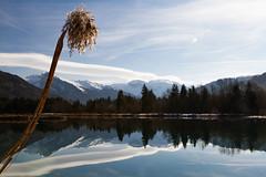 A l'heure des reflets... (J&S.) Tags: france hautesavoie taninges lac verney reflet nuage eau montagne ciel roseau