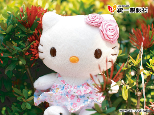wallpaper hello kitty. Wallpaper Hello Kitty Uni-