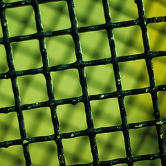 user coordinate system, color 3:  155/365 (helen sotiriadis) Tags: abstract black green yellow canon fence square dof bokeh depthoffield autocad 365 tilt canonef50mmf14usm canoneos40d ministract toomanytribbles dslrmag