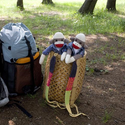 Saiko Lakeside Camp