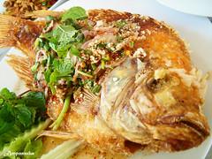 Fried Thai Red Tilapia With Minced Pork / ลาบปลาทับทิมทอด