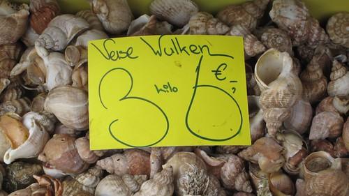 Fresh snails