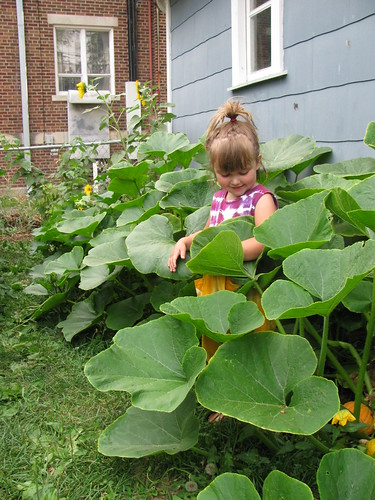 squash plants almost taller than Lillian